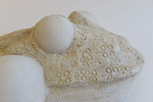 Detail beeld van kikkerkop van witte klei met structuur van kant en grote bolle ogen
